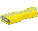 250076 Terminal - 6.3m - fully insulated- yellow - 1543  250076.jpg